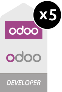 Odoo Developers